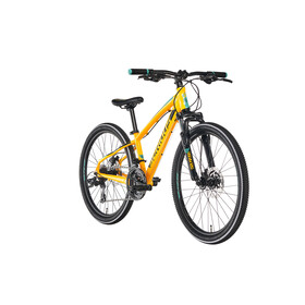 "Serious Rockaway Childrens Bike 24"" Disc yellow/black"